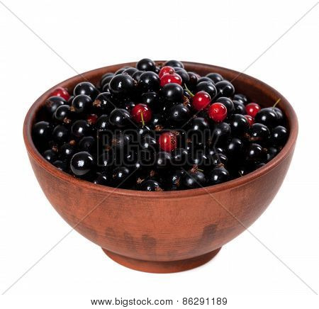 Blackcurrants With Redcurrants In Ceramic Bowl