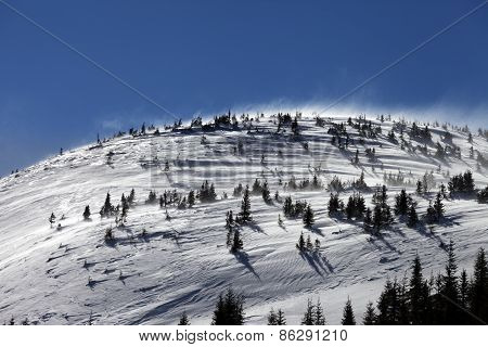 Winter Carpathian Mountains At Wind Day