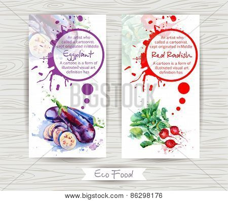 Flyer with radish and eggplant. Watercolor illustration.
