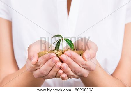 Hands Holding Little Plant Growing From Coins As Symbol Of Money Saving And Growth