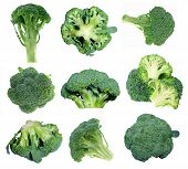 pic of cruciferous  - different views of broccolis on white background - JPG