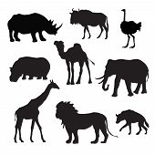 stock photo of african lion  - Wild african animals black silhouettes set with buffalo hippopotamus giraffe isolated vector illustration - JPG