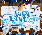 foto of environmental conservation  - Natural Resources Conservation Environmental Ecology Concept - JPG