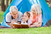 image of granddaughter  - Happy grandparent with granddaughter reading book at campsite in park - JPG