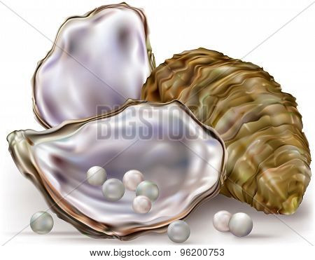 Oyster Shell Pearls