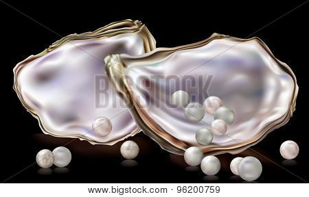 Pearls In The Oyster Shell