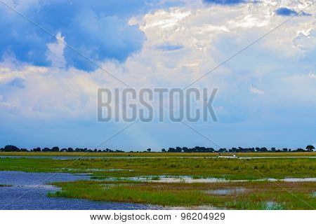 Landscape At Chobe River