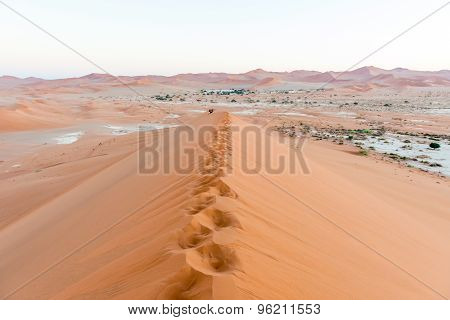 Sand Dune In The Namibian Desert Near Sossusvlei In Namibia.