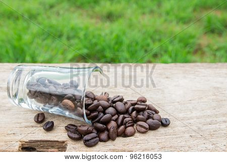 Coffee Beans In Glass On Wooden Background