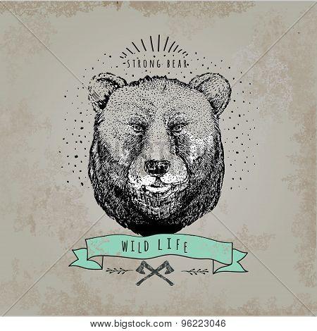 Vintage  Bear. Design for t-shirt
