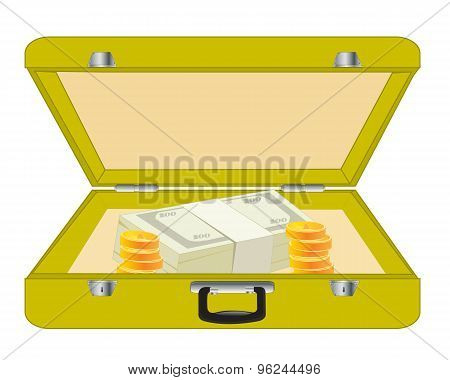 Valise with money
