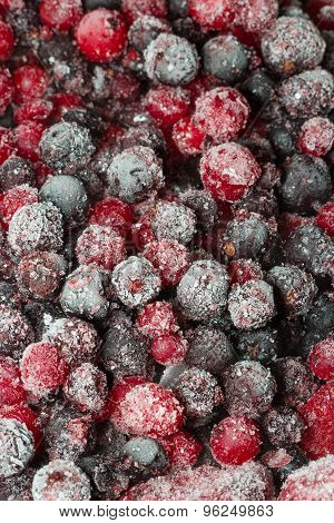 Frozen Berries Close-up