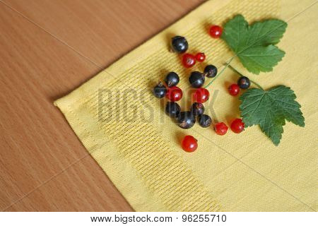 Black And Red Currant On A Napkin