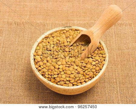 The Seeds Of Green Lentils On Canvas