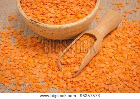 The Seeds Of Red Lentils On Canvas