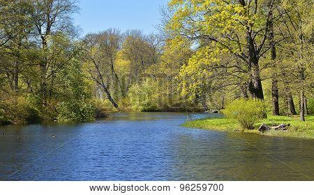 Spring landscape on a pond.