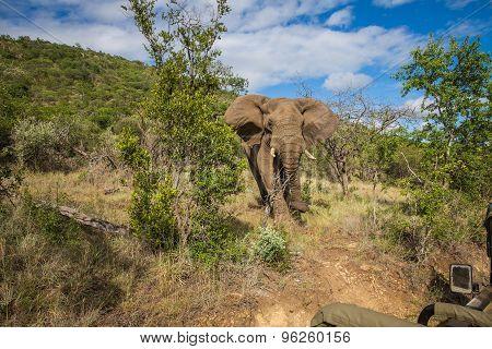 Mzkuze Falls - South Africa