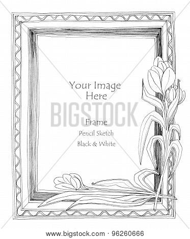 Picture Frame Flower Pencil Sketch