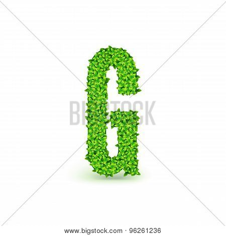 Green Leaves font G.