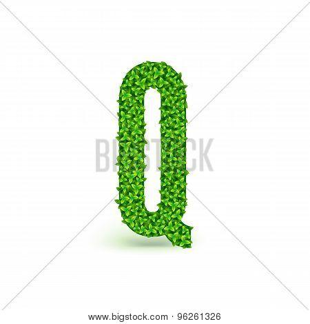 Green Leaves font Q.