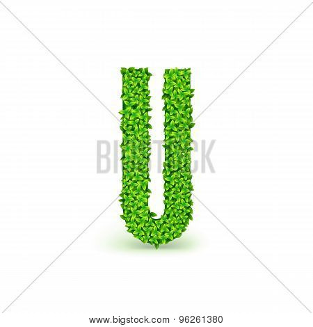 Green Leaves font U.