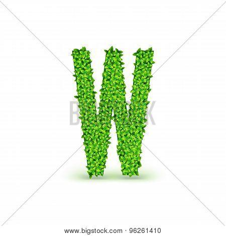 Green Leaves font W.