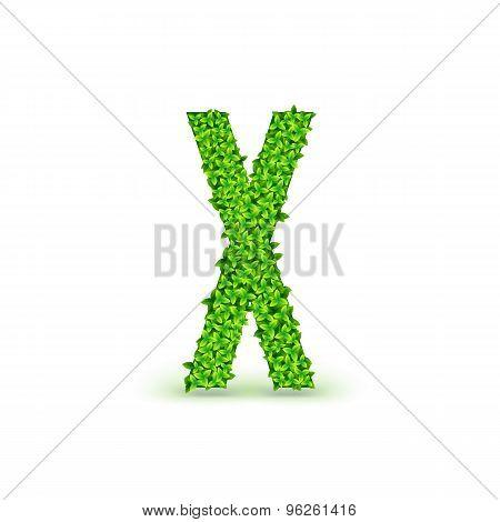 Green Leaves font X.
