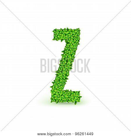 Green Leaves font Z.