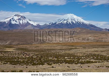 Volcanos on the Altiplano