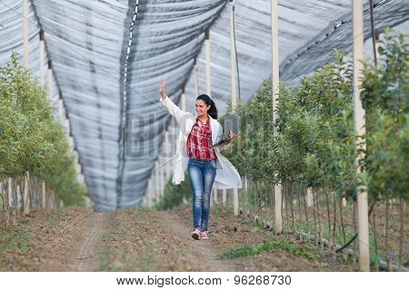 Woman Agronomist In Orchard