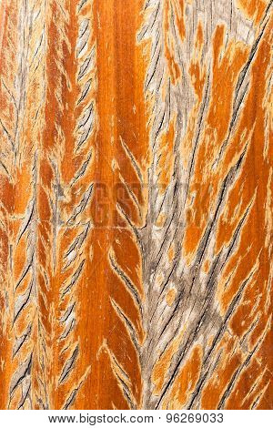 Scar Texture On Wood