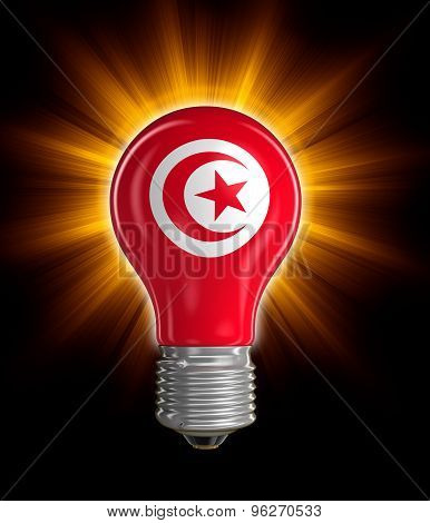 Light bulb with Tunisian flag (clipping path included)