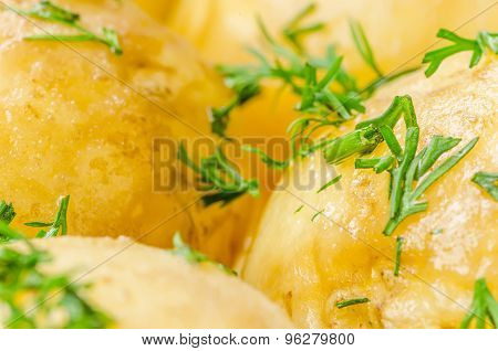Traditional Ukrainian food boiled new potatoes with butter and dill