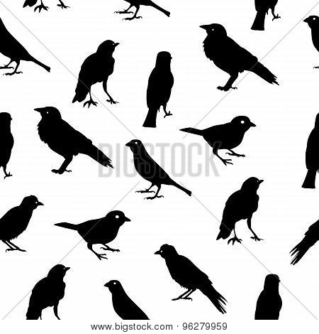 Birds Silhouettes Seamless Pattern Background Vector Illustratio