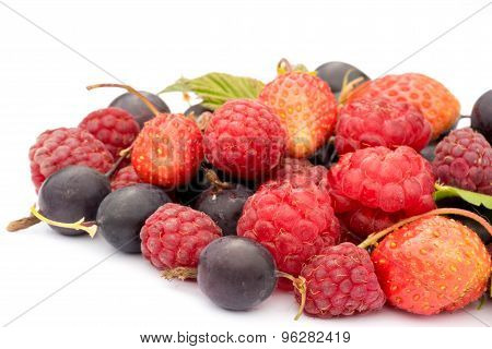 Healthy Eating Concept: Different Fresh Berries, Strawberries, Raspberries, Black Currants And Gross