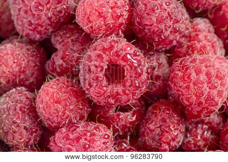 Raspberry with water drops close up