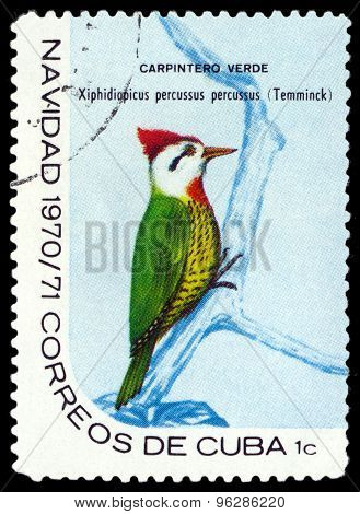 Vintage  Postage Stamp.  Cuban Green Woodpecker.