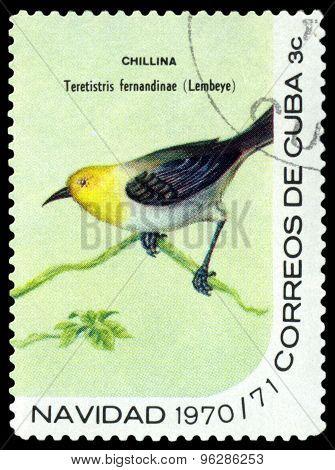 Vintage  Postage Stamp.  Bird. Teretistris  Fernandinae.