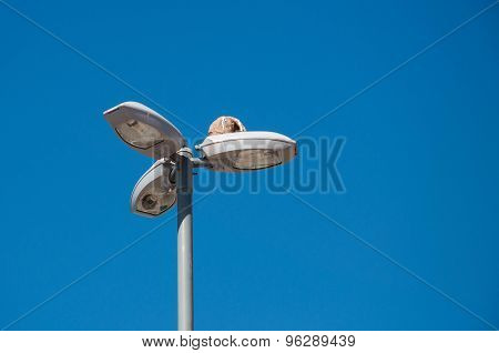 Horneros nest on streetlamp with blue sky