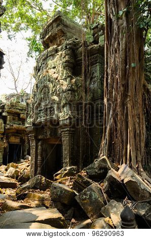 Ta Prohm, part of Khmer Angkor temple complex, popular among tourists ancient landmark and place of worship in Southeast Asia. Siem Reap, Cambodia.