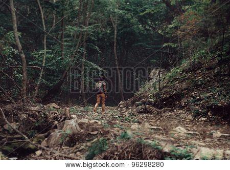 Hiker Walking In Summer Forest