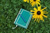 picture of foreground  - Green book or notepad and pencil laId on a grass overhead shot with blurred flowers in the foreground - JPG