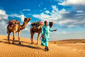 image of camel  - Rajasthan travel background  - JPG