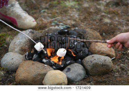 Marshmallow Heatwave