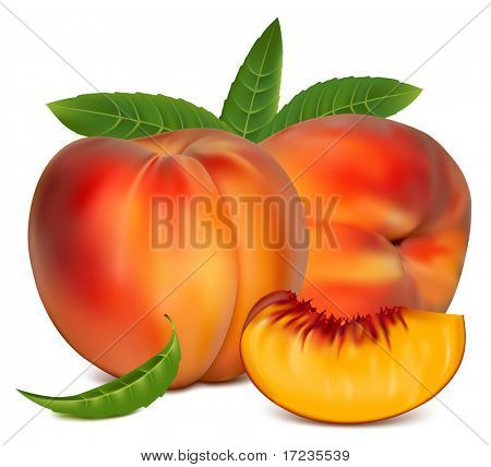 Vector illustration. Ripe peach fruit with green leaves.