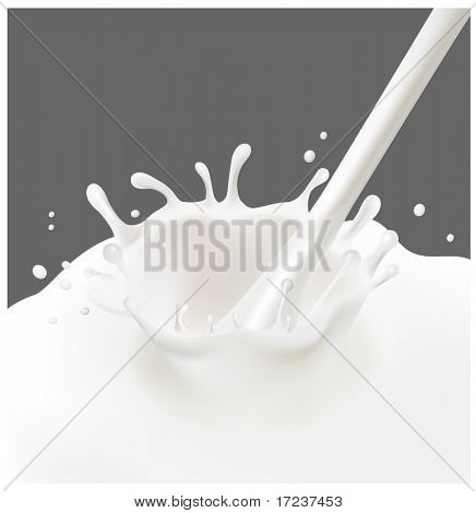 Vector illustration. A splash of milk on the gray background.