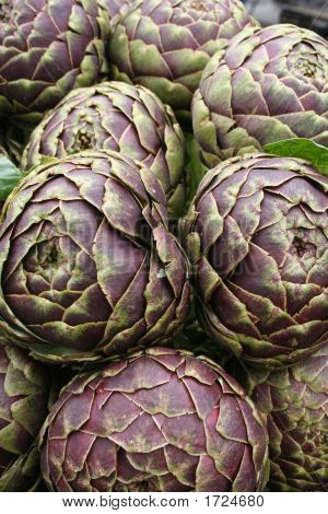 Colorful Artichoke
