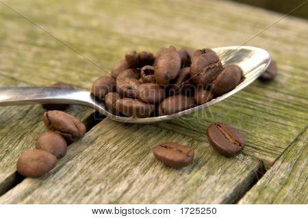 Cofffe Neans On Spoon 01