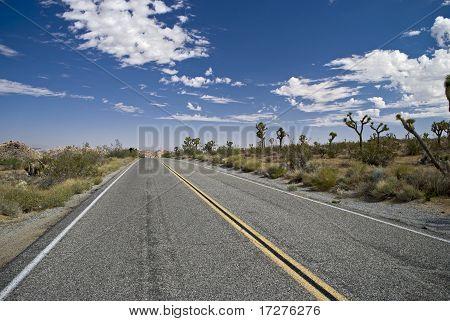 Vanishing Point Roadway