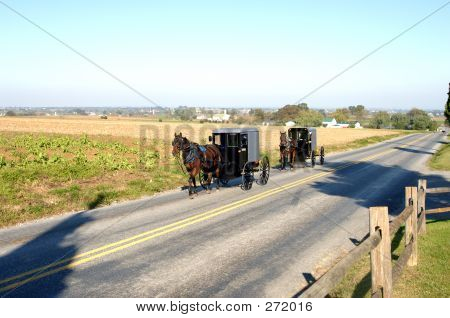 Amish Carriages